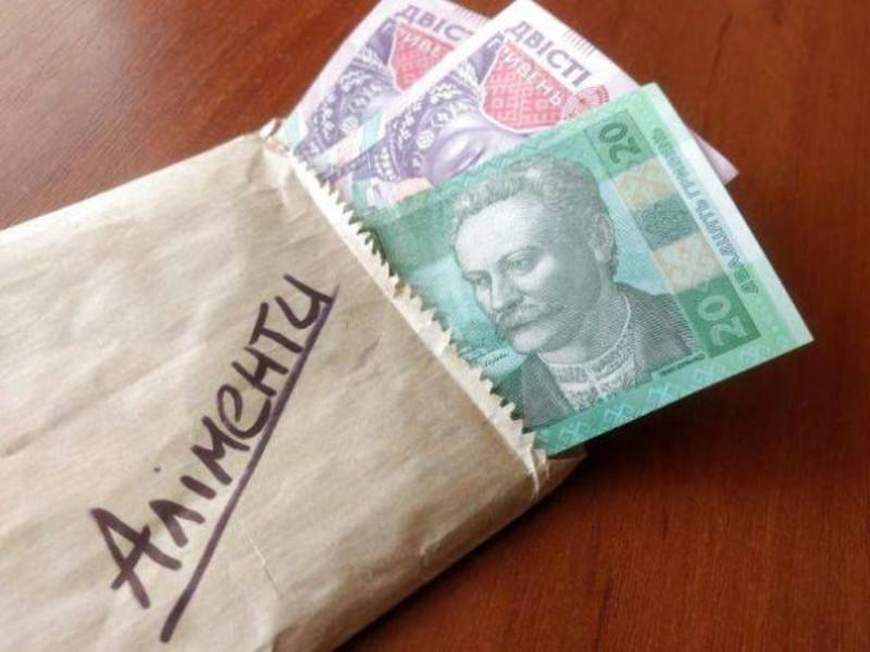 Сума боргу полончанина станом на 1 січня 2019 року склала 47 тисяч 507 гривень