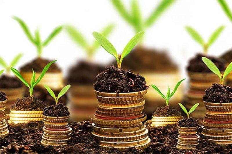 На оздоровлення довкілля платники Хмельниччини спрямували понад 27 мільйонів гривень екологічного податку