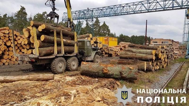 Вартість вилученої деревини понад мільйон гривень