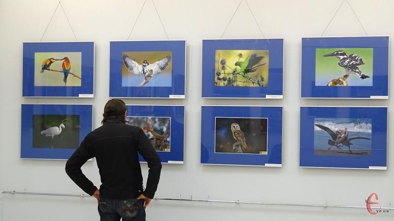 Сьогодні у хмельницькму музеї відбулося відкриття виставки фотографій