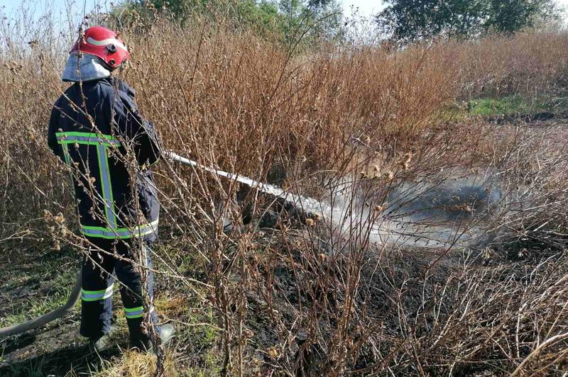 На Деражнянщині рятувальники ліквідували пожежу торфовища