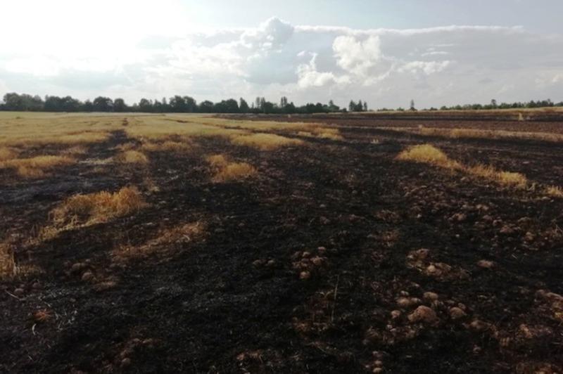 Літом рятувальники закликають громадян обережніше поводитися з вогнем, щоб не наробити лиха