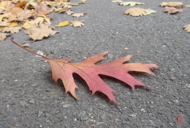 Четвер, 19 листопада, на Хмельниччині очікується хмарним