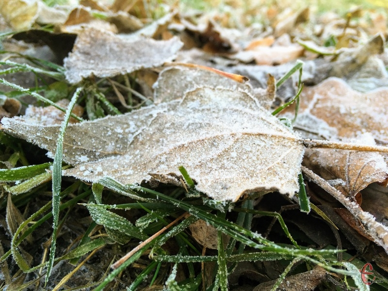 Зима потрохи вступає у свої володіння