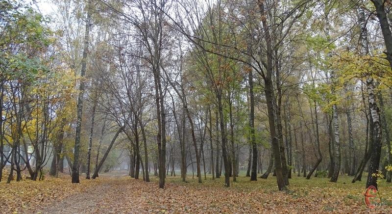 Завтра на Хмельниччині можливі невеликі тумани