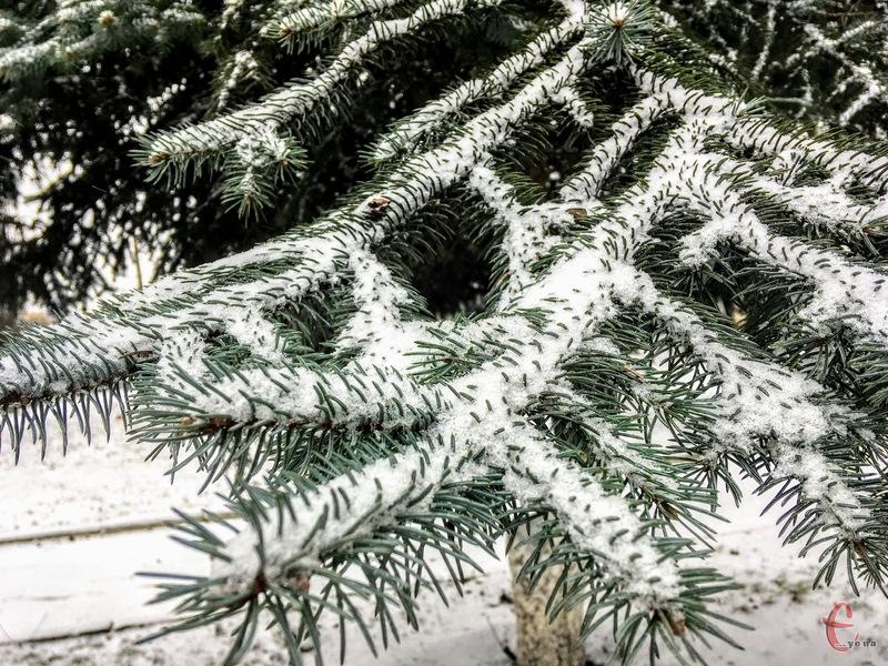 Сніг не вщухатиме 8 лютого