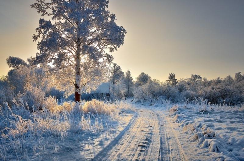 8 січня варто очікувати ясний день, який прийде на зміну похмурому ранку