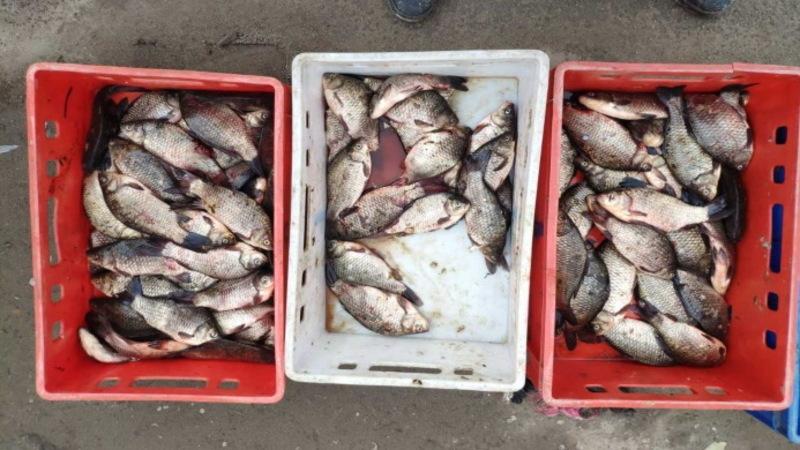 На Хмельниччині продовжують виявляти порушників законодавства у сфері охорони водних біоресурсів