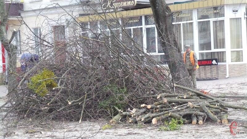 Комунальники омолоджуватимуть дерева