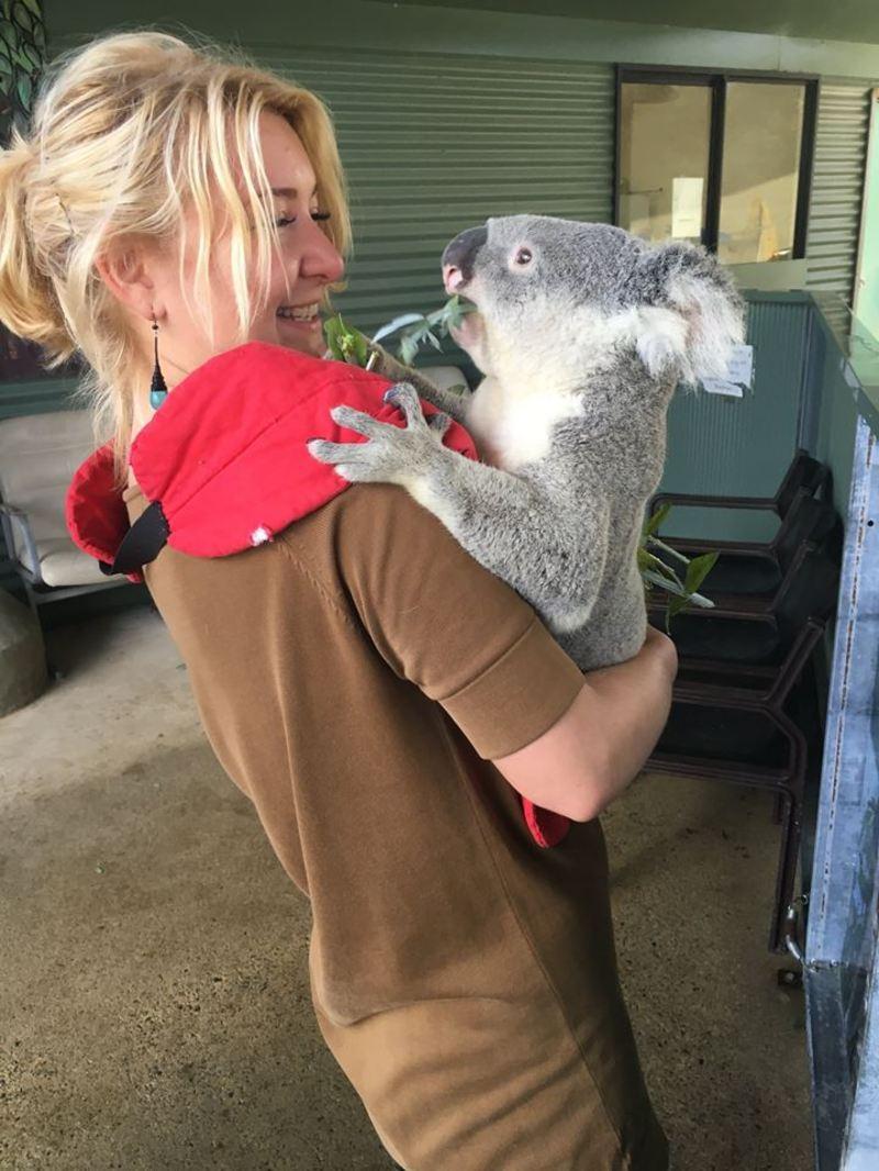 В Австралії тварини не бояться людей