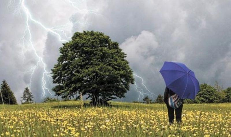 Під час грози уникайте високих дерев