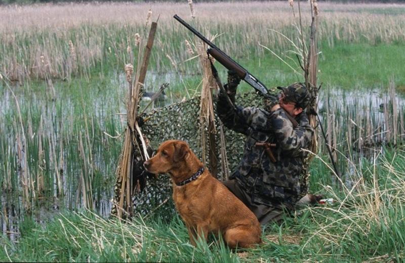 У неділю одразу двох чоловіків випадково підстрелили мисливці
