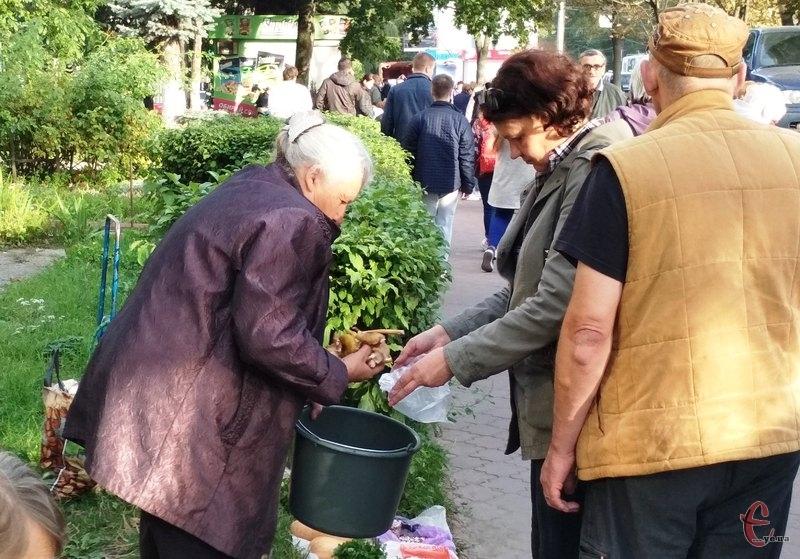 Перші весняні гриби, які збирають цінителі тихого полювання, з'явилися на ринках Хмельницького