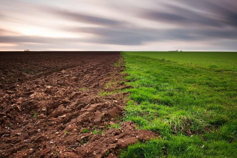 Шість гектарів земель у Хмельницькому районі намагалися привласнити незаконно