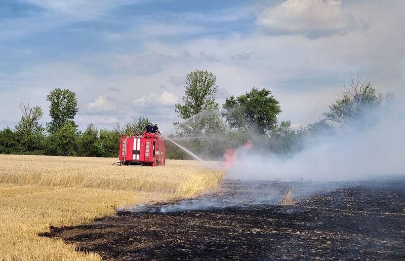 Пшениця горіла у Новоушицькому районі