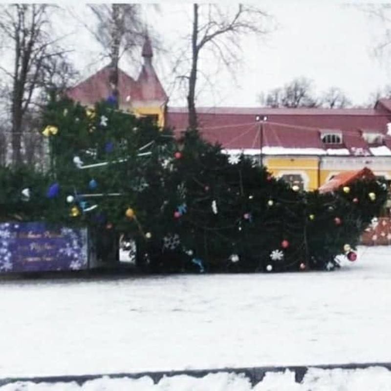 У Дунаївцях 31 грудня впала новорічна ялинка