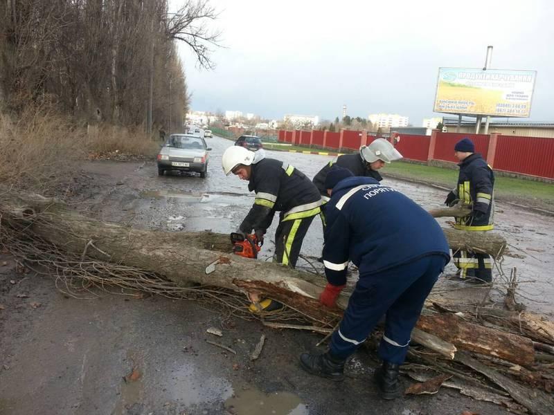 Праіцвники ДСНС розблокували дорогу, на яку впало дерево