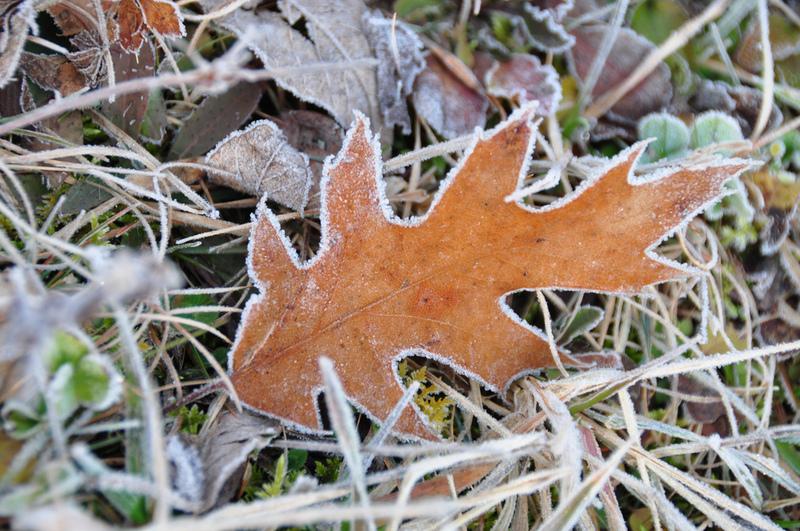 Від завтра в Хмельницькій області різко похолодає
