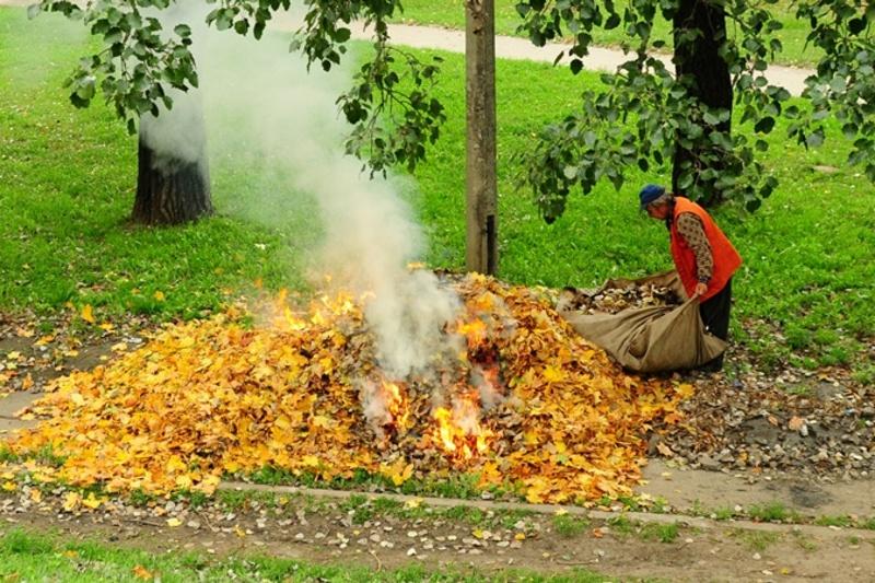 Дим від спаленого листя небезпечний для здоров'я людини