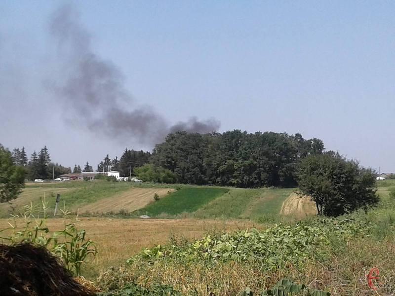 Дим від спалювання свинячих тушок йде прямо на село Коров'є