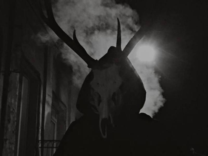 Прем'єра фільму «Cervidae» відбудеться у Старій фортеці 13 вересня під час урочистого відкриття ІІІ Міжнародного кінофестивалю «Бруківка»