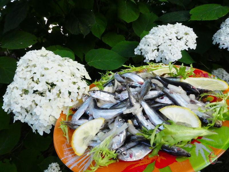 Деякі кулінари видаляють у тюльки ще й хребет, хоча робити цього не варто! Він м'якенький, повністю просолюється і практично не відчувається. До того ж, саме в рибних кісточках міститься найбільше фосфору.