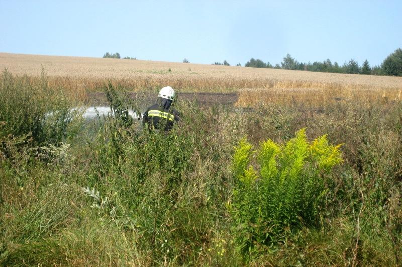 Пожежу гасили дві одниці спецтехніки і п'ять вогнеборців
