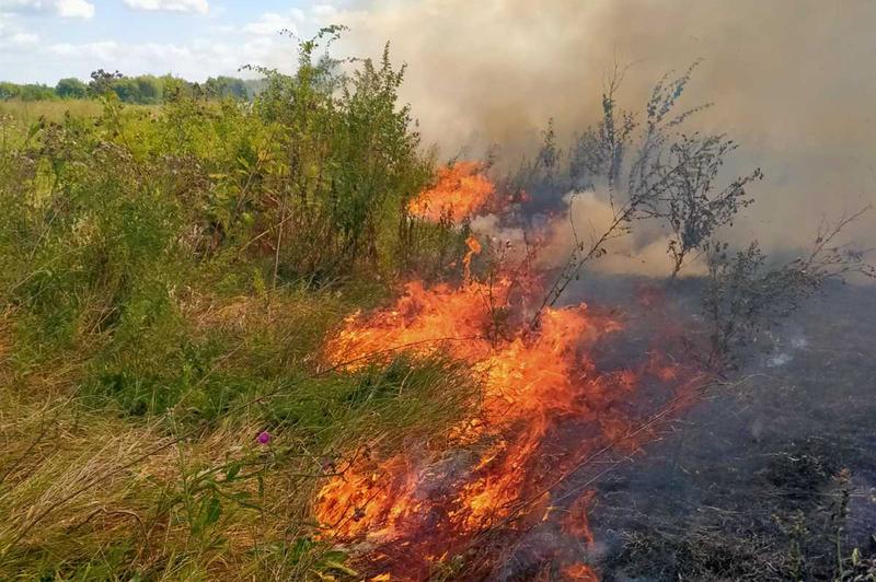 Трава загорілася близько 12-ої години