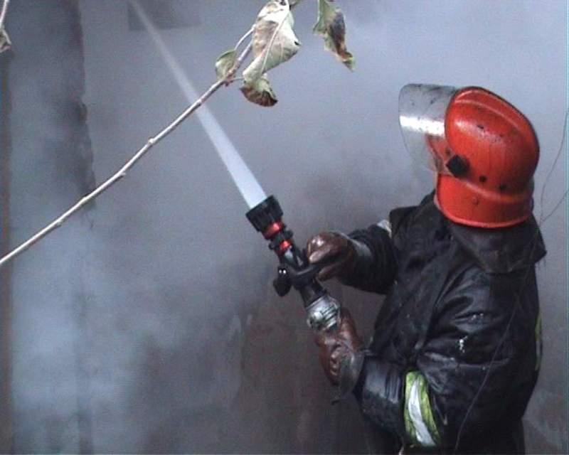 Пожежники врятували стареньку власницю