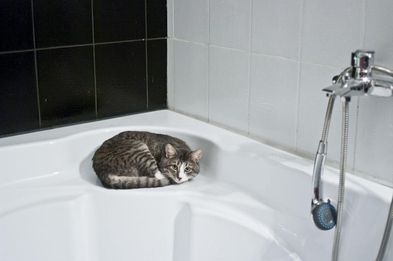 31 серпня гаряча вода буде подаватись весь день