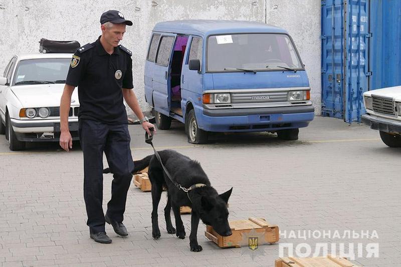Іноземців вразило різноманіття порід, яке використовують українські правоохоронці в роботі