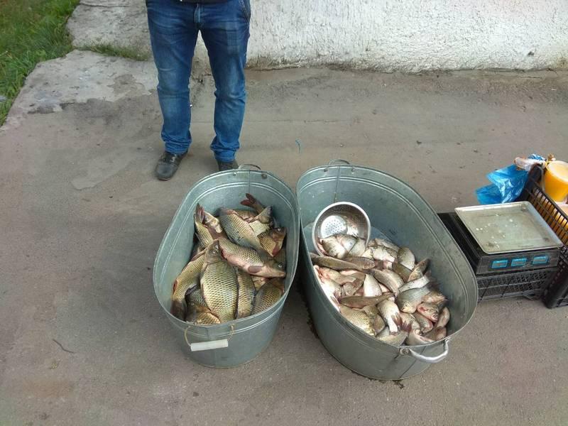 Зазвичай риба невідомого походження, без документів, є браконьєрським уловом і не завжди придатної якості