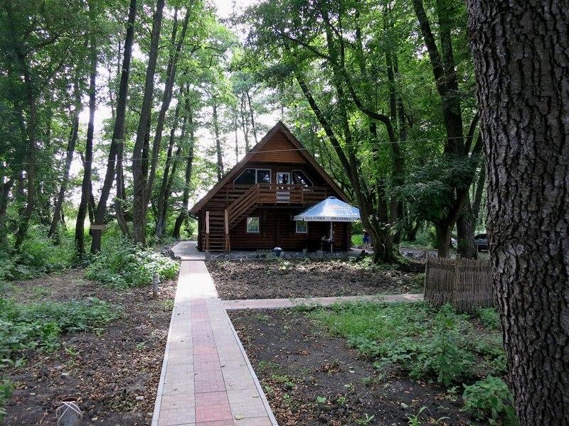 На Хмельниччині державі повернуто майже 3 гектари лісу, який зобов'язано звільнити від незаконної забудови