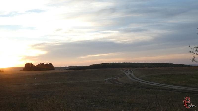 Підприємство незаконно вивело із сільгоспобороту більше 2 гектарів землі