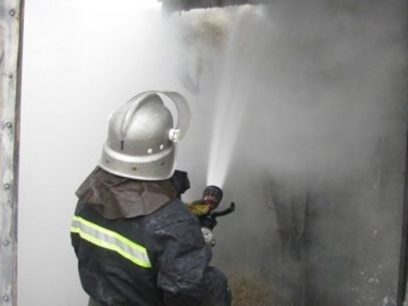 Пожежу загасили рятувальники