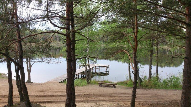 Збудований туристичний кемпінг у лісі