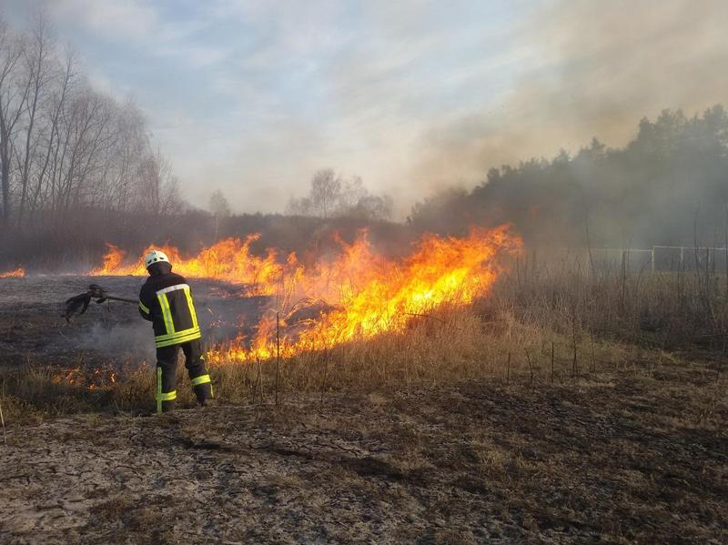 Ймовірною причиною пожежі стало необережне поводження з вогнем