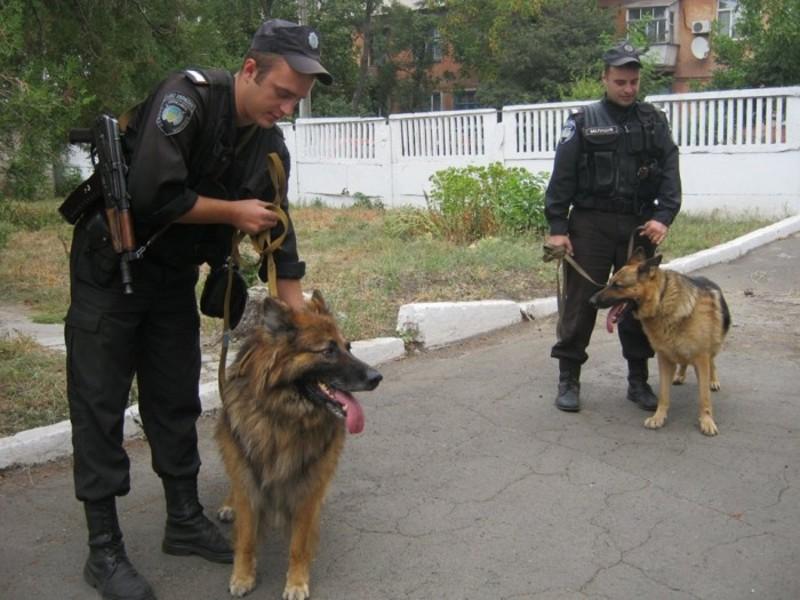 У центрі буде здійснюватися підготовка службових собак митних органів країн Центральної Європи