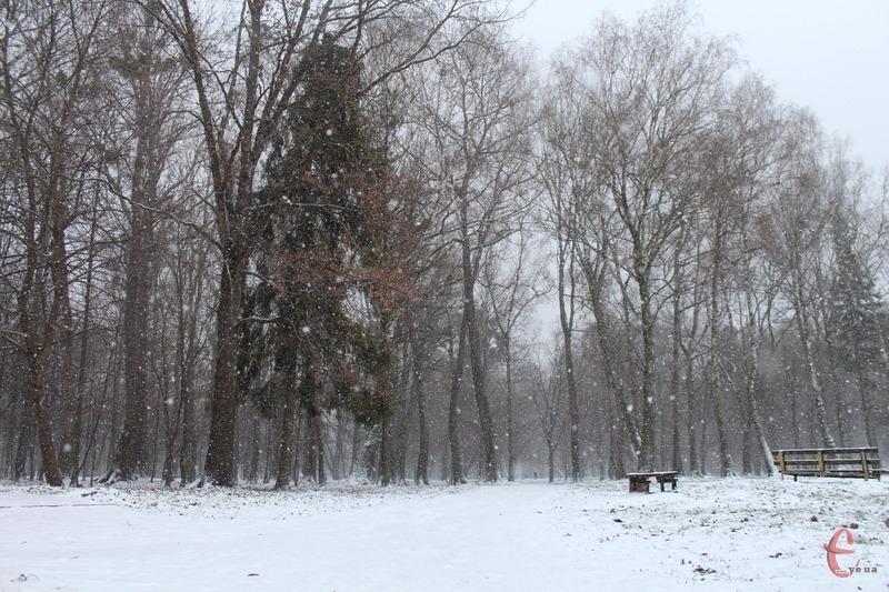 Парки міста вкриті снігом