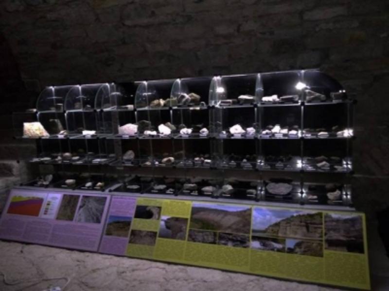 У Кам'янці запрацював музей палеонтології
