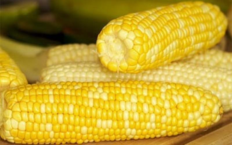 Можна буде скуштувати кукурудзу та пригадати, які ж іще страви готують з цього продукту