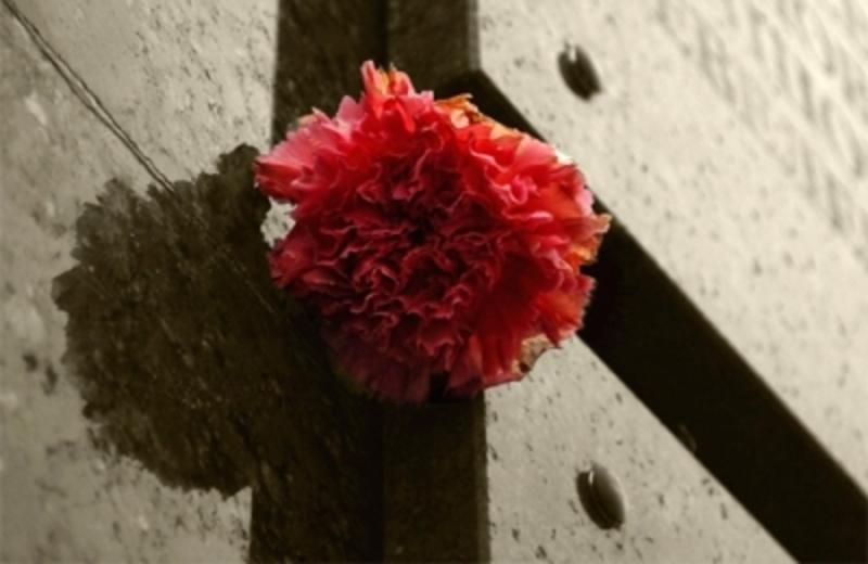 У Кам'янці встановлять дві меморіальні дошки
