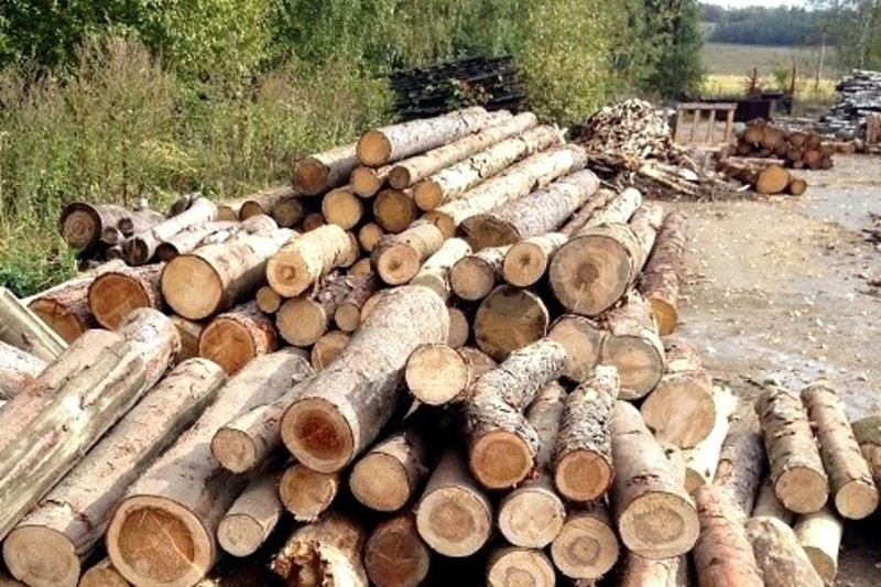Чоловік продав деревину  за 2,5 тисячі гривень