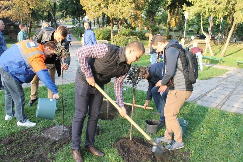 На сад з 38 сакур було витрачено понад 30 тисяч гривень