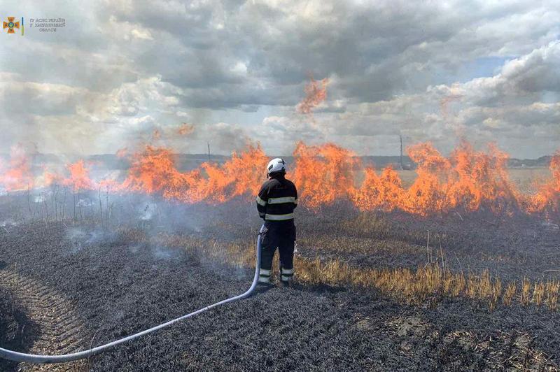 Вогнеборцям і аграріям вдалося врятувати від полум'я 65 гектарів пшениці