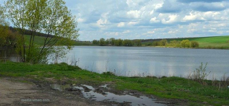 Вартість земель - близько 220 тисяч гривень.
