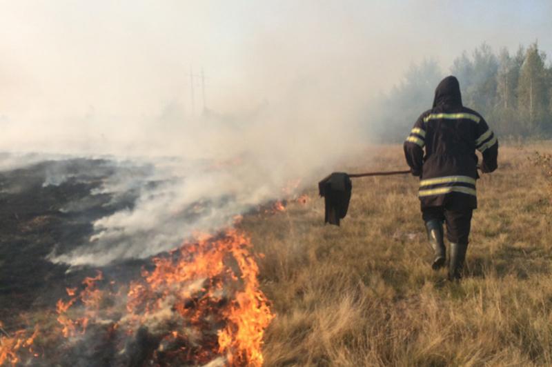Вогонь знищив 10 тисяч квадратних метрів сухої трави