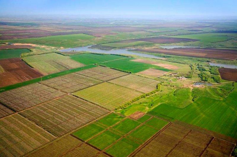 В січні цього року Грицівське вище професійне училище № 38 уклало договір про спільний обробіток землі з одним із підприємств області