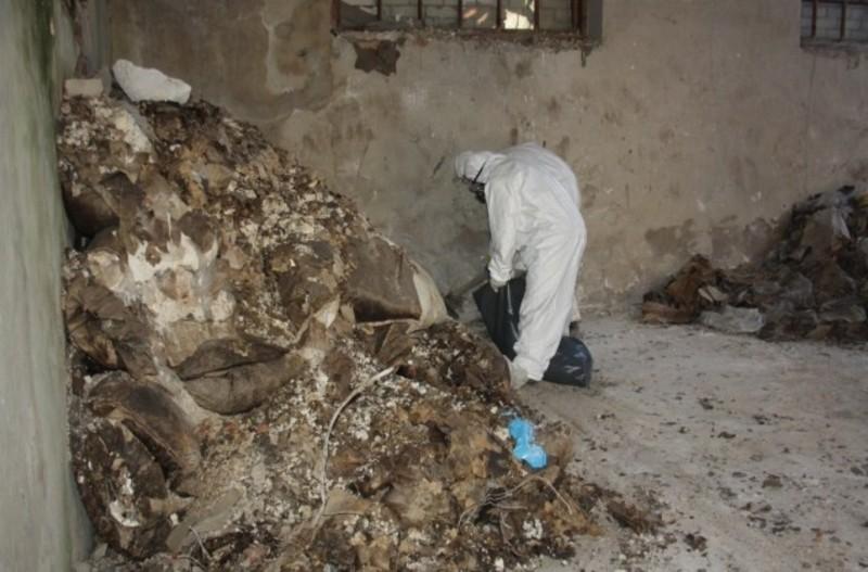 Тонни токсичних речовин утилізовують фахівці зі столиці