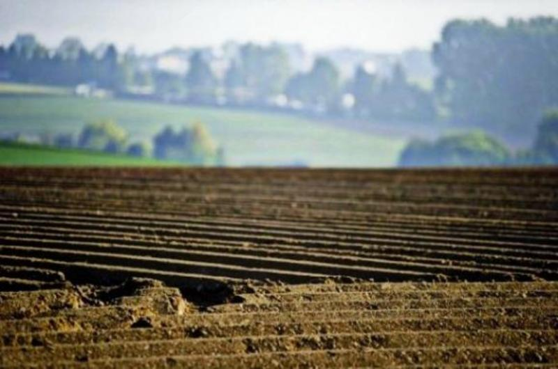 Для відкриття ринку землі необхідно завершити інвентаризацію і розмежування земель сільськогосподарського призначення